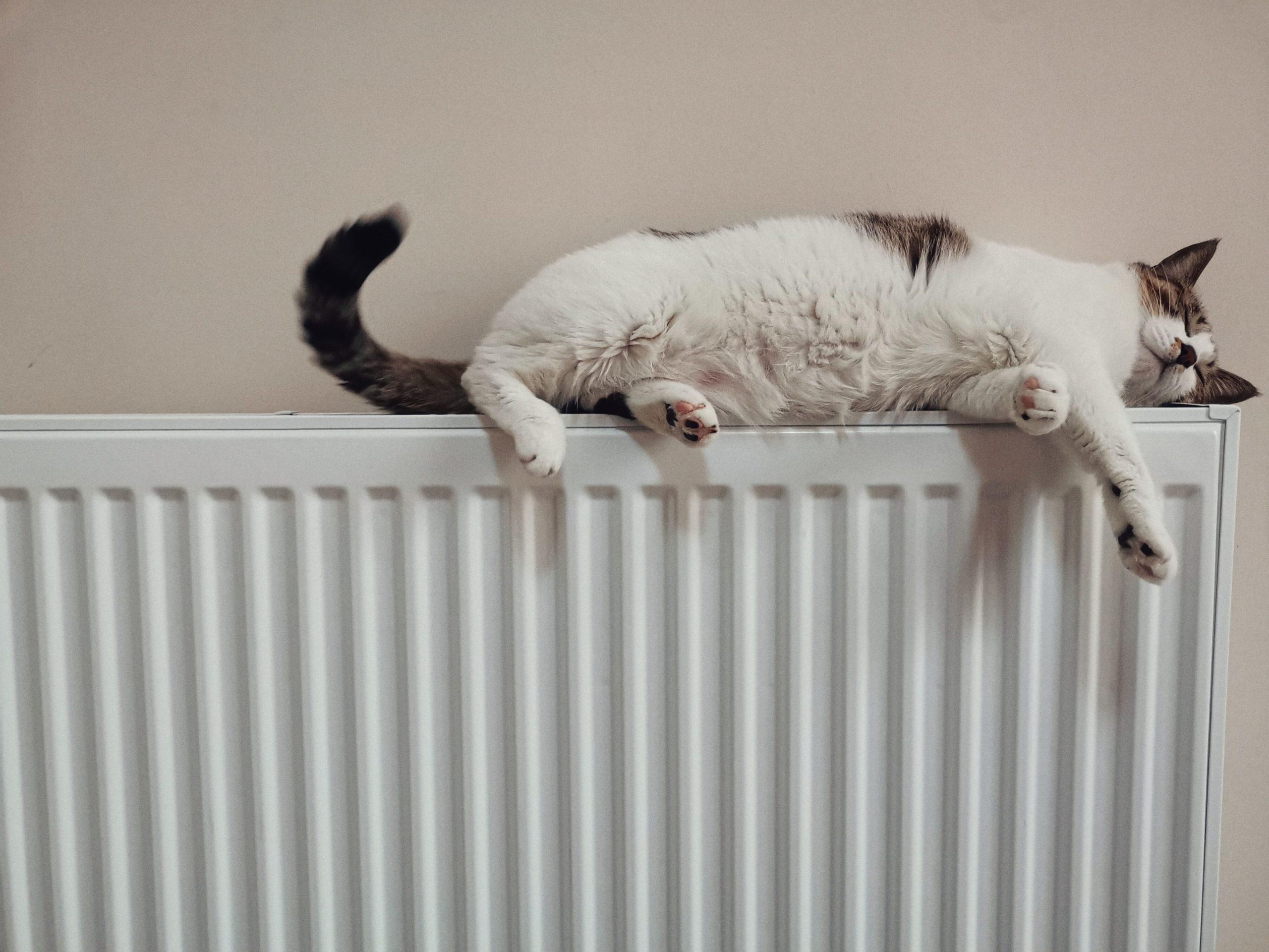 Необходимость электрического отопления